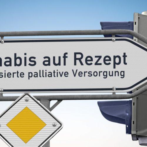 """Wegweiser """"Cannabis auf Rezept,spezialisierte palliative Versorgung"""""""