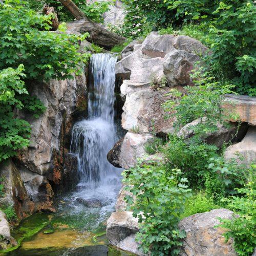 Ganzheitliche und sanfte Medizin durch Naturheilverfahren